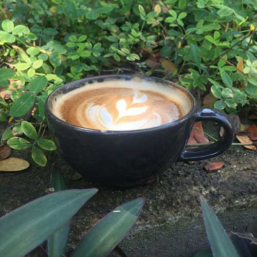 "Top 5 ""Hidden Gem"" Coffee Shops in Chiang Mai"