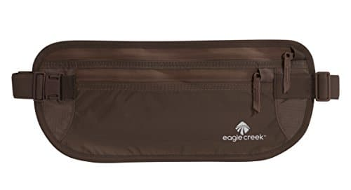 Eagle Creek Travel Gear Undercover Hidden Pocket, Black 19