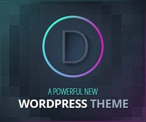 The perfect WordPress Drag and Drop Theme by ElegantThemes